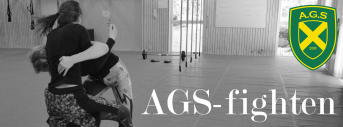 AGS-fighten 2017
