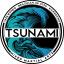 Tsunami MMA