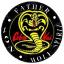 Cobra Kai Karate
