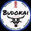 Budokai Jiu-Jitsu