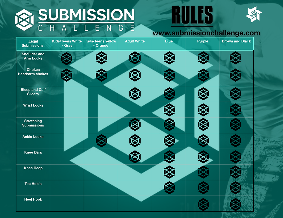 submission-challenge-rules-20190117075558.png