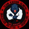 Team Kaishin