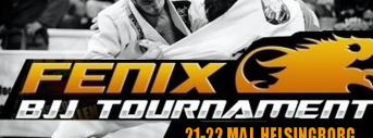 Fenix BJJ Tournament VII