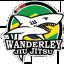 Wanderley Jiu Jitsu