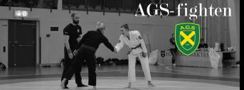 AGS-fighten 2018